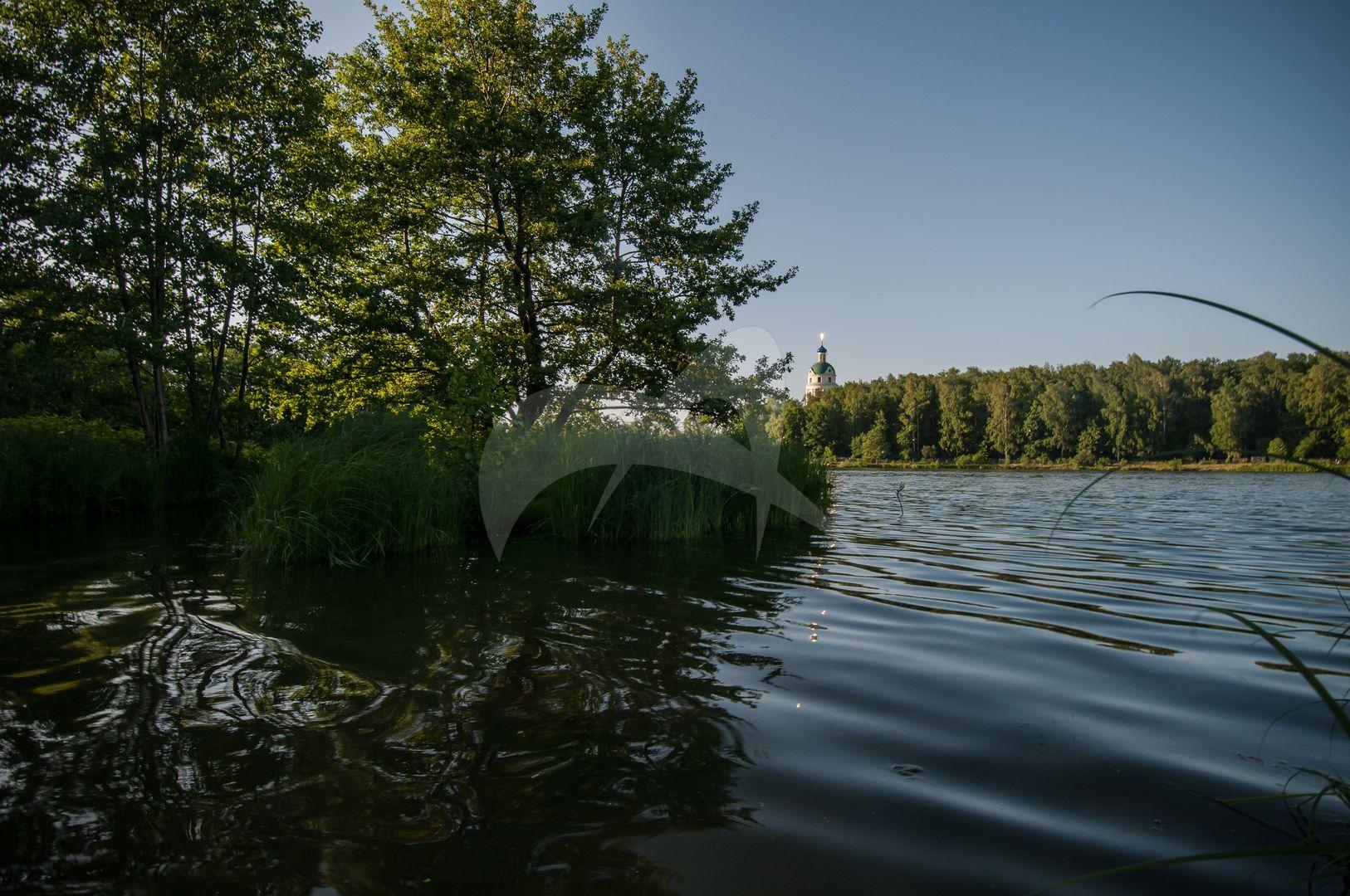 Парк прудом, усадьба Гребнево, XVIII-ХIX вв.