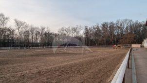 Поле конкурное (85х60), 1950-1960-ее гг., арх. Б.И. Аверинцев, комплекс конно-спортивной школы в Измайлово