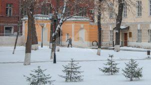 Ограда и ворота, усадьба А.К.Разумовского