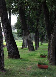 Парк, усадьба Поливаново (Разумовских), XVIII-XIX вв.