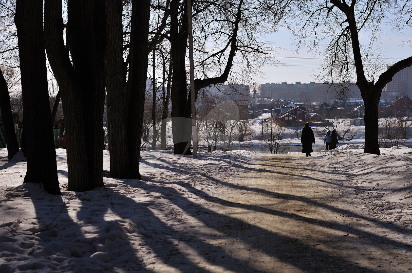 Парк с прудами, XVIII в., усадьба «Кривякино»
