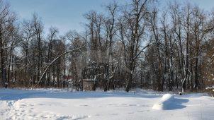 Парк с прудом, усадьба «Полтево»
