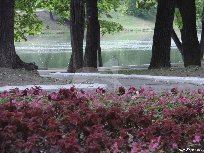 Екатерининский дворец, 1772-1776 гг., архитекторы Д. Кваренги, А. Ринальди, Ф. Кампорези. Парк дворца с прудами, каналами и памятниками архитектуры XVIII в. (грот, плотина, беседка)