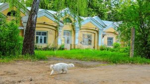 Конюшня, усадьба «Соколово-Кучино» (Мыза)