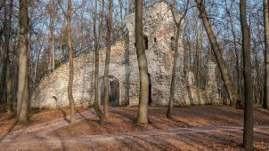 Башня-руины, нач. XIX в., усадьба «Царицыно»