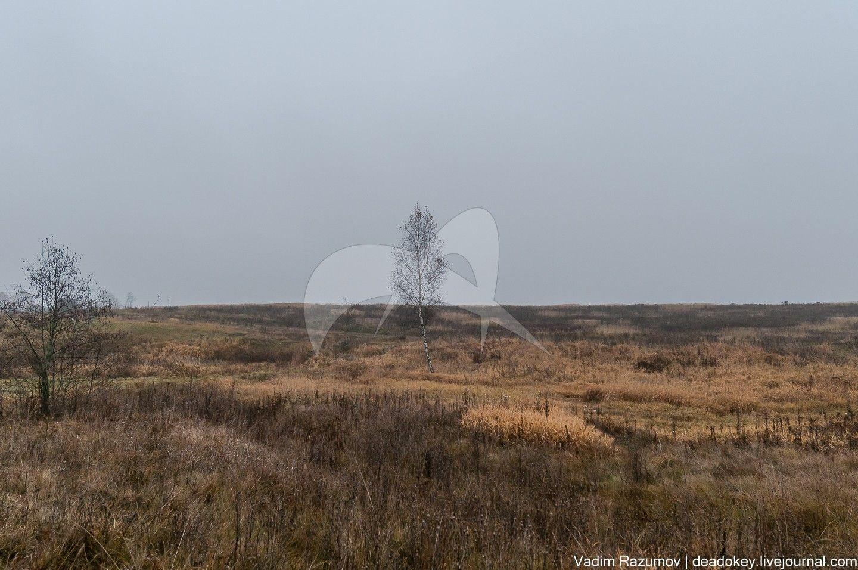 Селище Могутово-1, Могутовский археологический комплекс