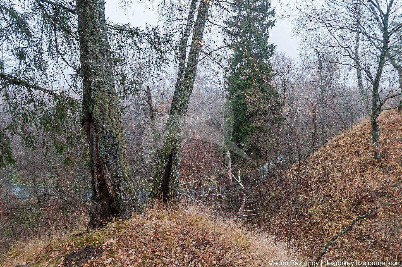 Селище Могутово-2, Могутовский археологический комплекс