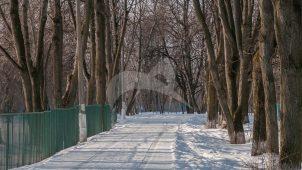 Остатки парка, пруд, ХVIII-ХIХ вв., усадьба-имение декабриста Михаила Александровича Фонвизина