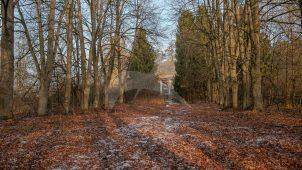 Парк, усадьба «Филатово», XIX в.