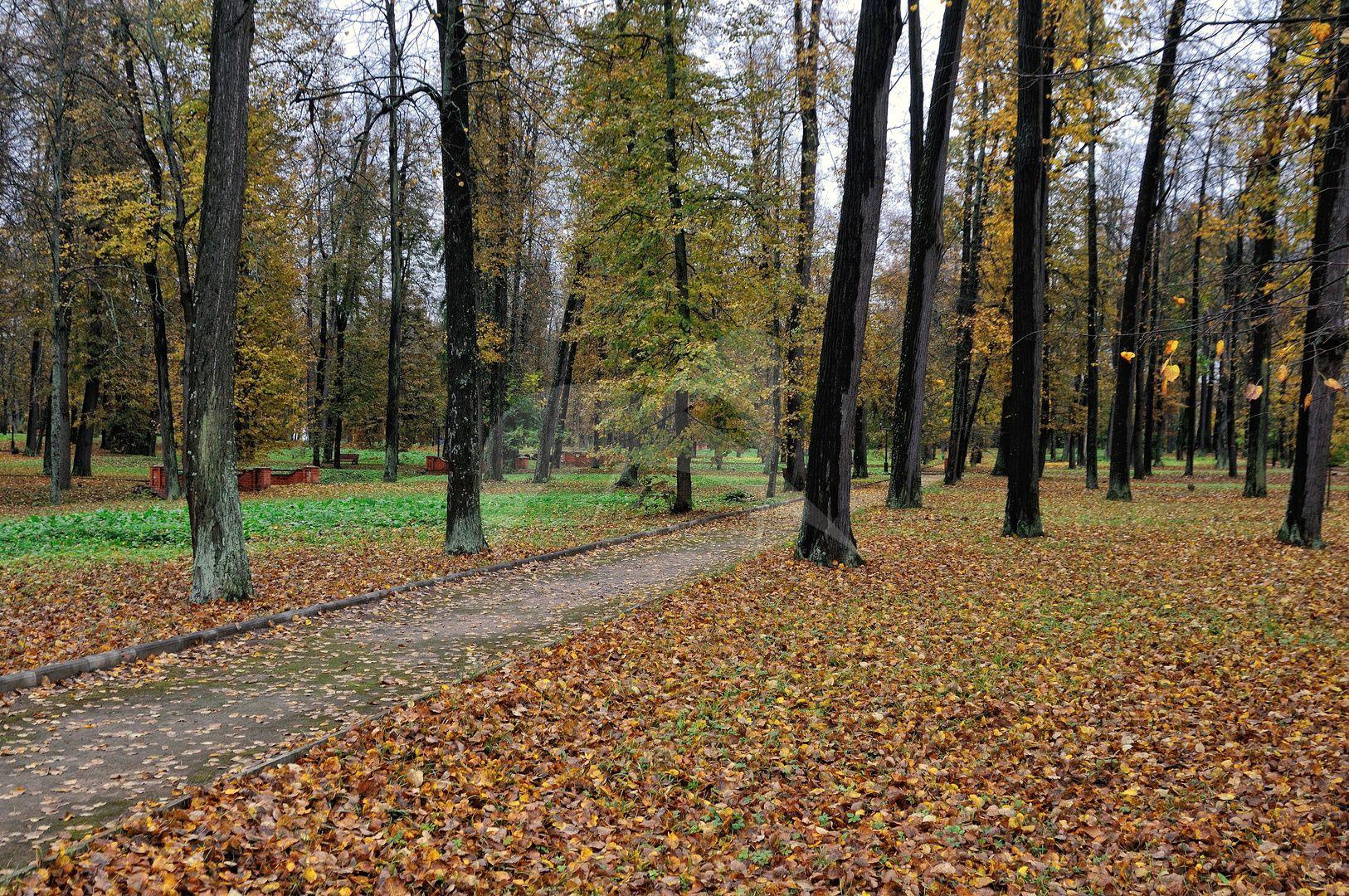 Парк, Ансамбль усадьбы Марфино