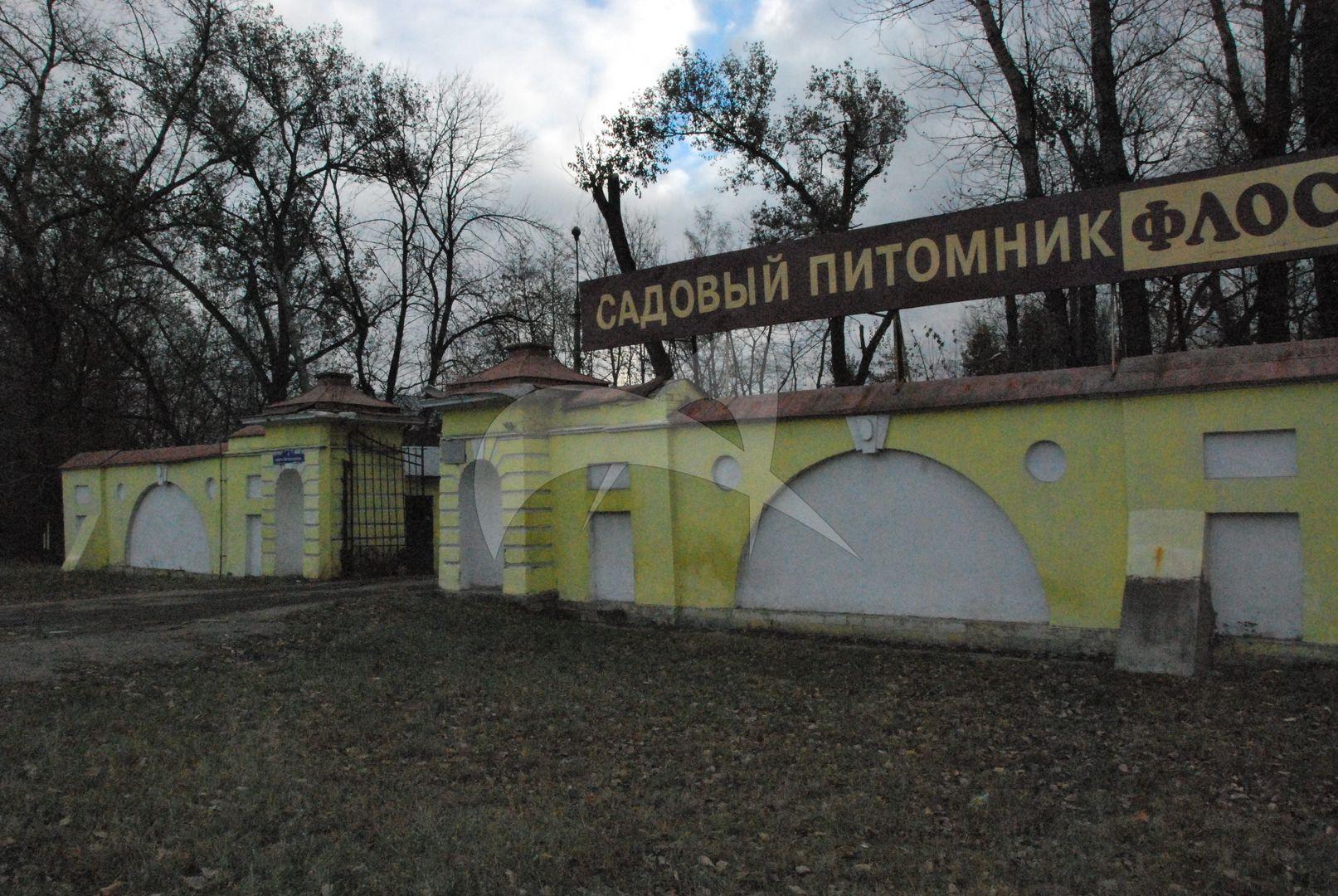 Ворота с оградой, усадьба Горенки, ХVIII в.