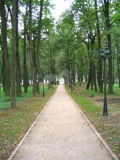 Парк, усадьба Дубровицы, ХVIII в.