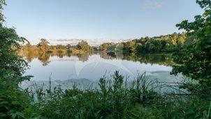 Парк с прудами, XVIII в., усадьба «Щапово»