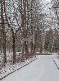 Парк, XIX — начало ХХ в., санаторий Г.А. Каратаевой