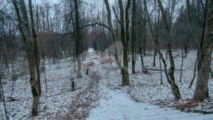 Парк, стены  и башни ограды, усадьба Обольянинова, ХVIII в.