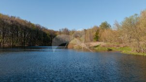 Парк с прудами, конец XVIII — начало XIX вв., усадьба «Зендиково»