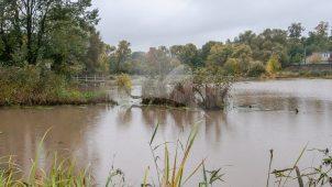 Парк с прудом, ХVII-ХIХ вв., усадьба «Кузьминское» – комплекс земской больницы