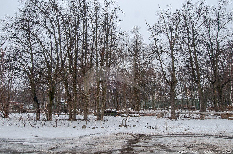 Парк с липовыми аллеями, усадьба «Тимохово», XIX в.
