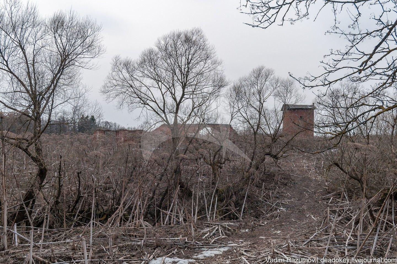 Псарня, начало  XIX в., усадьба «Белая Колпь»