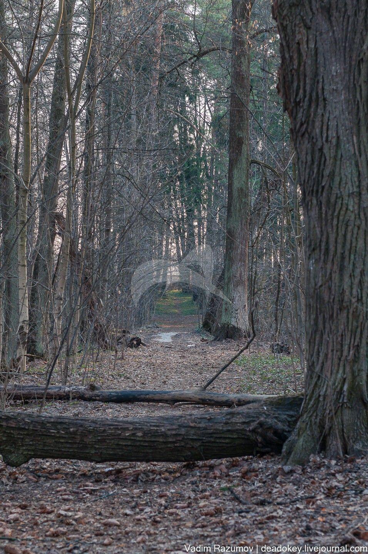 Парк с прудами, конец XVIII — начало XIX вв., усадьба «Никольское-Урюпино»