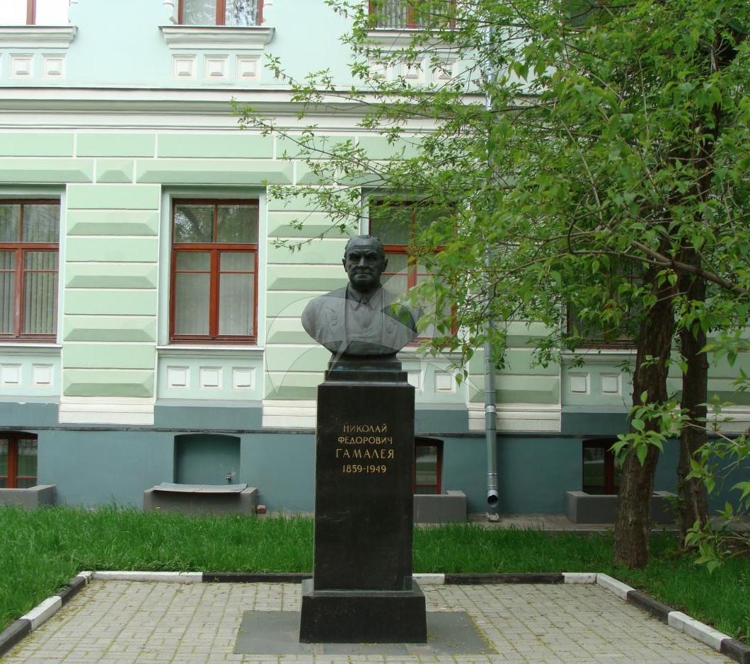 Памятник Н.Ф. Гамалею, 1956 г., ск. С.Я. Ковнер, Н.А. Максимченко, бронза, гранит