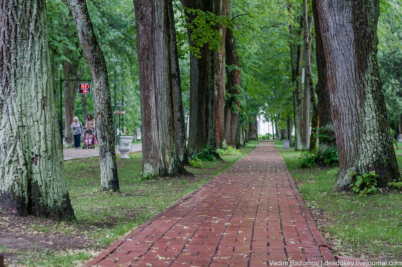 Парк, начало XIX в., усадьба «Рождествено», XIX в.